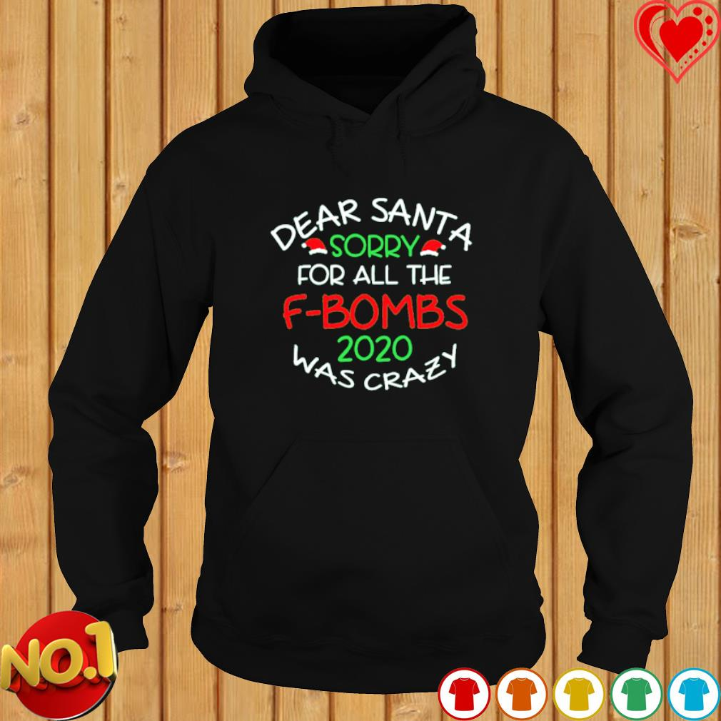 Dear Santa sorry for all the F-bombs 2020 was crazy s hoodie